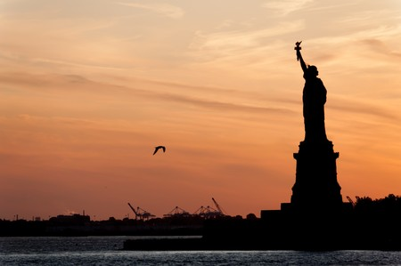 Silhouette of Liberty Island and a seagull at dusk photo