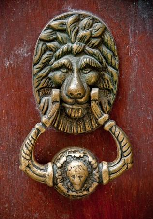 Close up of a lion-shaped door knocker photo