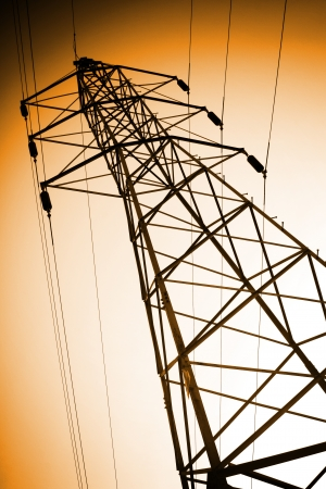 powerline: tower of electrical provision and high voltage