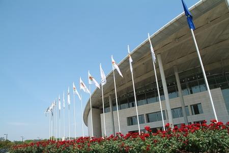 palacio: Shadow of flag on the facade of a building