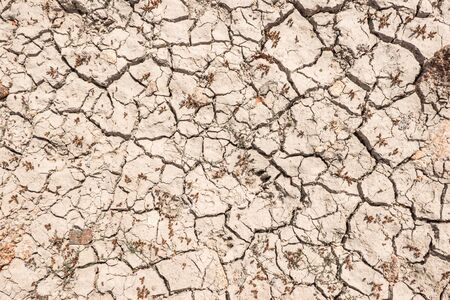 ground cracked by drought. global warming and drought concept.