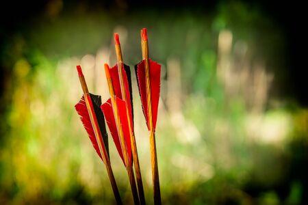 Red bow arrows on a green background with a beautiful bokeh, Romania Zdjęcie Seryjne