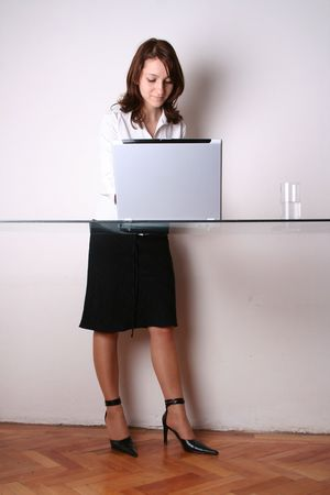 Business woman presenting with opened laptop.