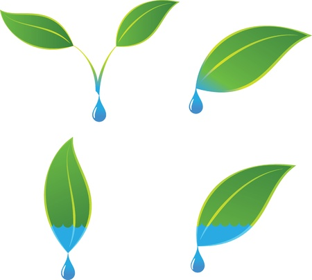 water logo: Green eco plant and water logo concepts