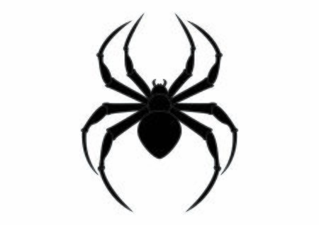 Black Spider Clipart. Arachnia. Illustration of black spider Ilustração