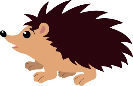 Hedgehog isolated on white background. Hedgehog clipart Vettoriali