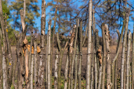 the outdated: Fence from wooden sticks. Outdated ways of construction. Stock Photo