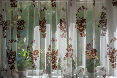 curtain background: Curtain covers window and windowsill with flowers at noon. Noon sunshine. Sunny day behind the curtain.