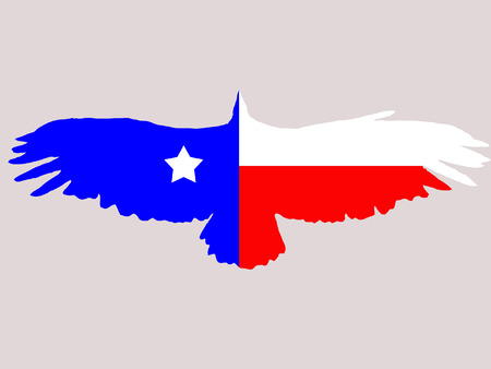 Illustration of abstract texas flag in eagles shape  Illustration