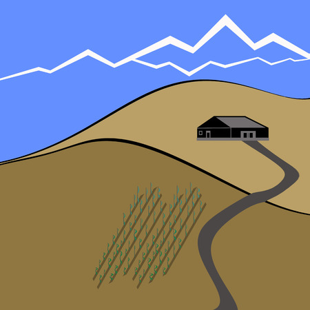 illustration of wine farm and wine field on the hill Vector