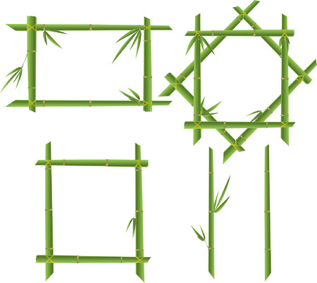 green set bamboo frames  Vector