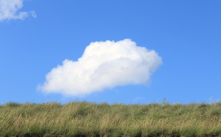 grassy knoll: green grass blue sky