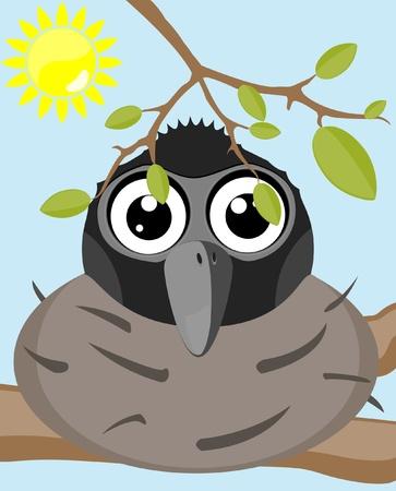 cartoon bird sitting on nest  Vector