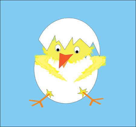 Chicken Stock Vector - 6433207