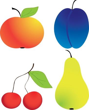 Fruit isolated on a white background Illustration