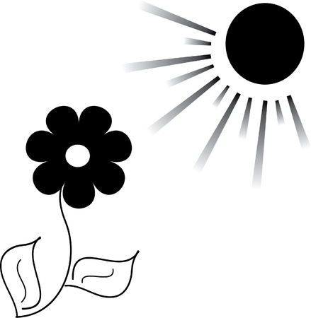 Flower and the sun, illustration Vector
