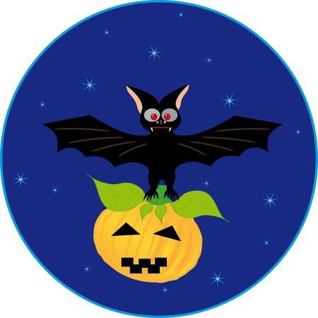 Bat and pumpkin  Vector