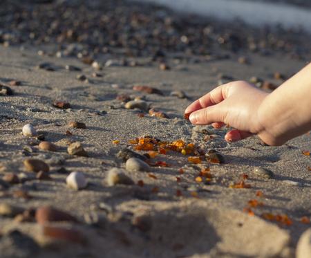 백그라운드에서 차가운 바다를 가까이에서 발트해 해변에서 발견 된 호박의 일부 조각 스톡 콘텐츠
