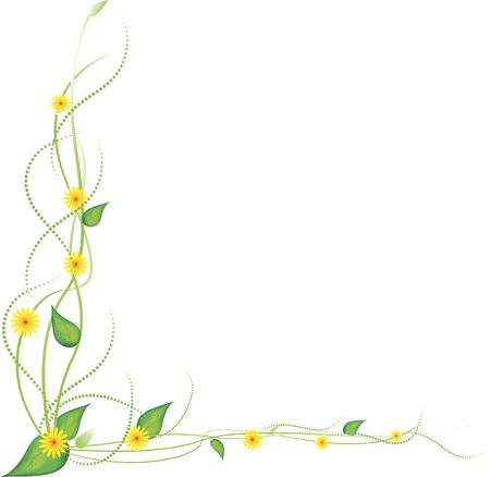 Gele bloemen op een witte achtergrond