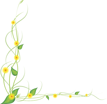 yellow flowers on a white background
