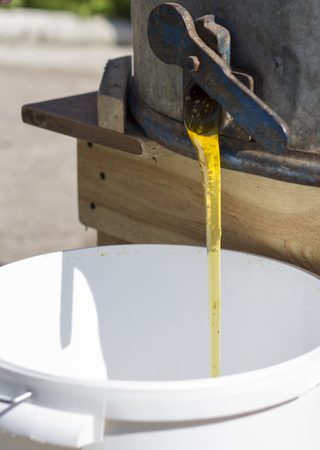 extractor: Fresh honey pouring out from the honey extractor. Stock Photo