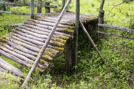 Old wooden bridge in the forest, Stock Photo