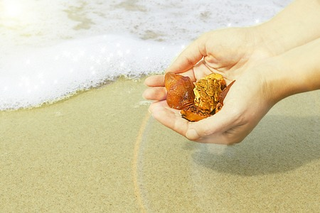 Amber in the hand with a bright reflection on the palm against the background of the sea.