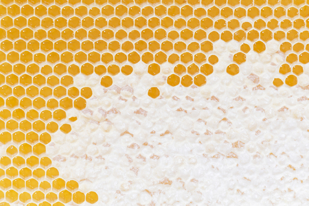 Honeycomb pattern. Hexagonal texture. Abstract pattern background. Honeycomb Golden background