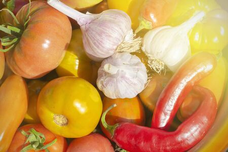 fresh vegetables from the garden - tomatoes, garlic and peppers