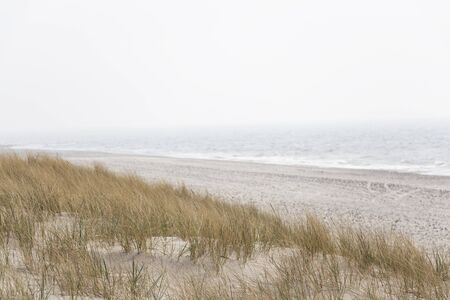 A soft pastel landscape photo of waves in fog crashing against an untouched, deserted beach. 免版税图像