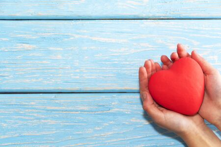 Female hands holding a red heart, the concept of love and care. 版權商用圖片