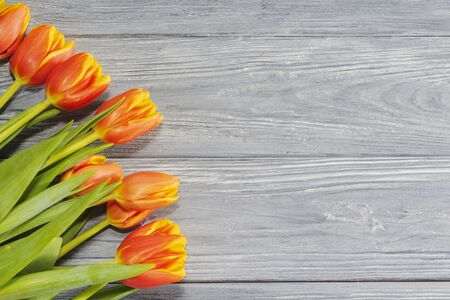 Red and yellow tulips on an old wooden background