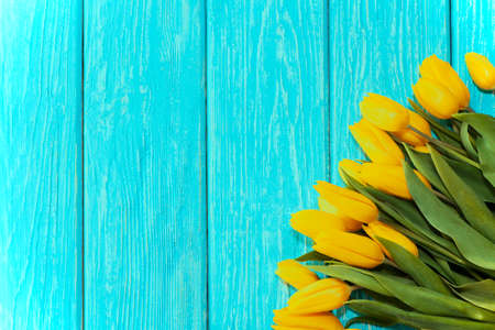 mothers day concept. tulips flower on pastel blue wooden background. Imagens