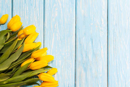 mother's day concept. tulips flower on pastel blue wooden background Imagens