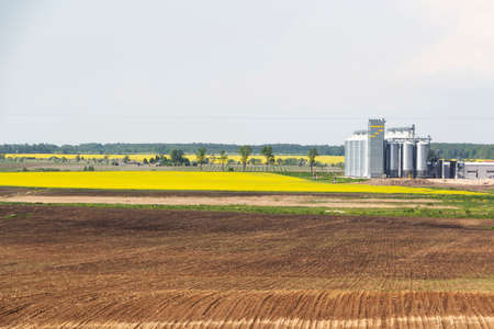 Field of rapeseed flowers, plant for cleaning and storage of agricultural products, flour, cereals and grains.