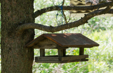 feeders: Bird Feeders With Triangular Roof In A Wood. On A Branch.