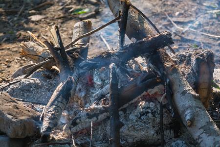 smoldering: Smoldering fire closeup. Forest wood. Stock Photo