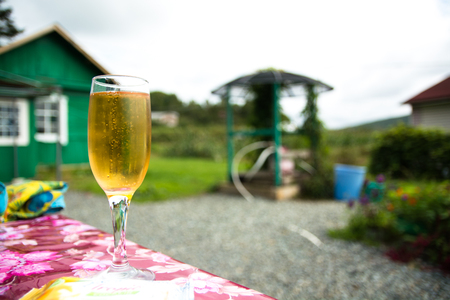misted: Misted glass of champagne outdoors. Countryside landscape on background. Stock Photo