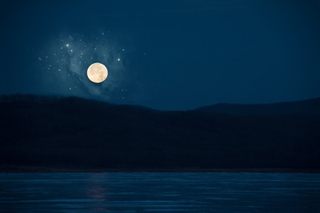 Frozen lake in moonlight. Rounded moon above the forest.