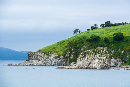 Seaside with white cliffs covered with greenery. Summer overcast day.