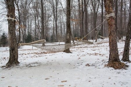 Hammock hanging in winter forest. Place for rest in a parkland.