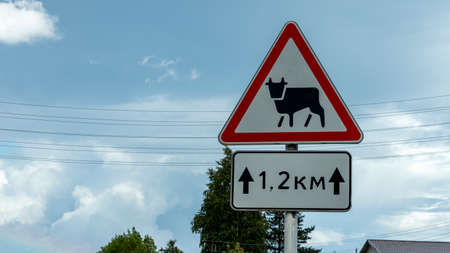 road warning sign ahead of a possible appearance of animals on the road Banco de Imagens