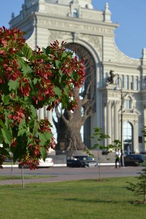 Palace of Agriculture Kazan