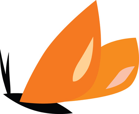 butterfly isolated: Vector illustration of a orange butterfly isolated on white Illustration