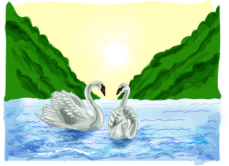 swans: Swans are friends