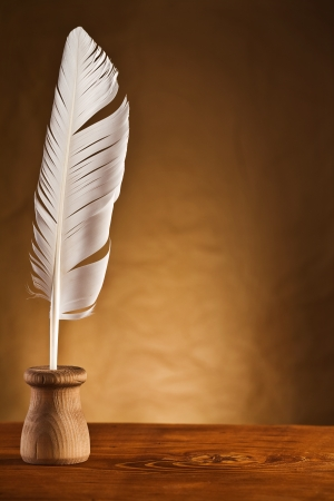 inkstand: copy space image of goose feather in inkstand
