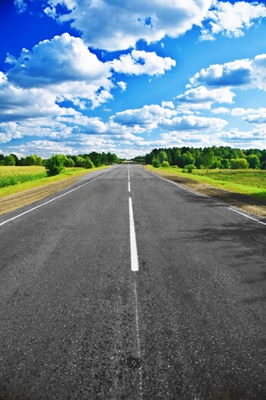 landscape road: road on field and forest