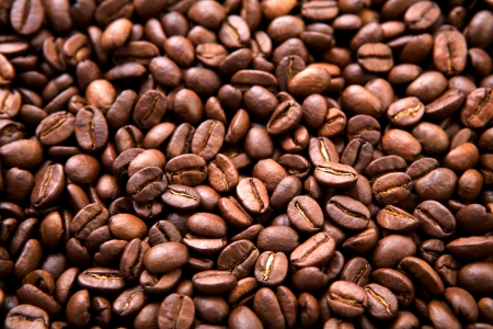 coffee crop: coffee beans