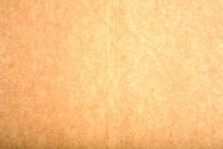 vintage parchement: paper texture