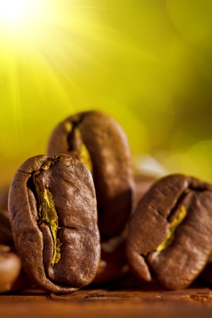 macroshot of coffee beans on the blurry background photo